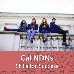 Cal NDNs Skills for Success - links to information about Cal NDNs