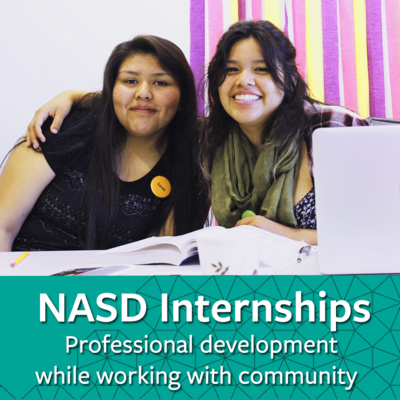Professional Development while working with community links to information about internships